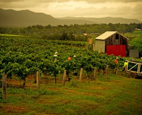 Around Hermitage Wine and Food Trail Hunter Valley - Byron Bay Accommodations