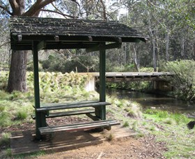 Barrington Tops State Forest - Byron Bay Accommodations