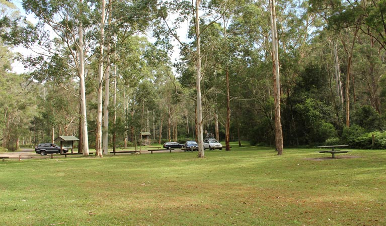 Mill Creek picnic area - Byron Bay Accommodations