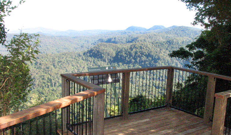 Murray Scrub lookout - Byron Bay Accommodations