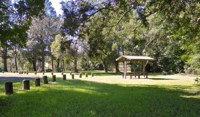 Moore Park picnic area - Byron Bay Accommodations