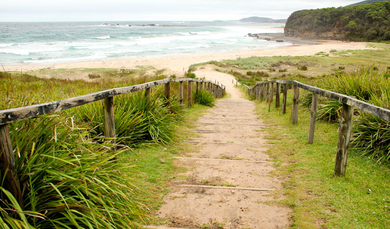 Pretty Beach to Durras Mountain walking track - Byron Bay Accommodations