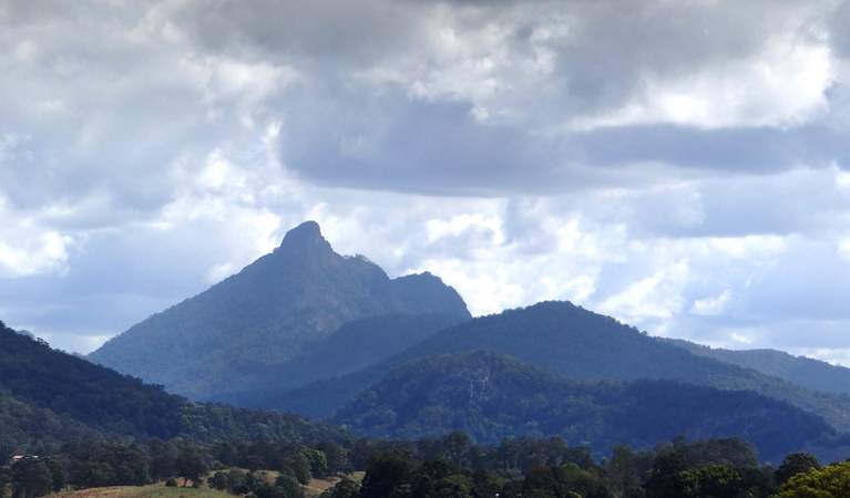 Wollumbin National Park - Byron Bay Accommodations