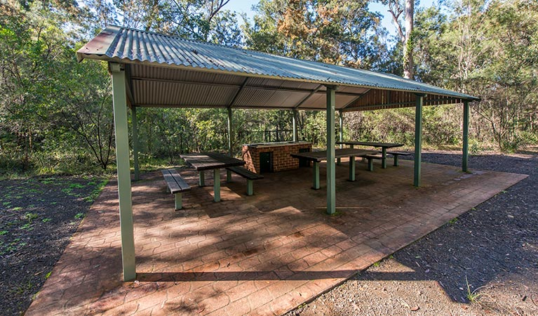 Brimbin picnic area - Byron Bay Accommodations