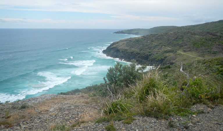Korogoro walking track - Byron Bay Accommodations