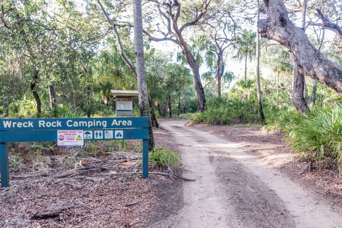Deepwater National Park Camping Ground - Byron Bay Accommodations