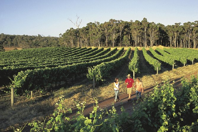 Margaret River Caves Wine and Cape Leeuwin Lighthouse Tour from Perth - Byron Bay Accommodations
