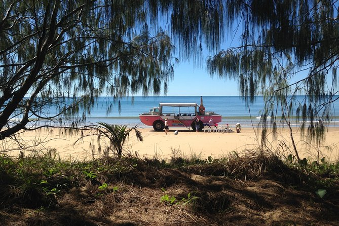 1770 Coastline Tour by LARC Amphibious Vehicle Including Picnic Lunch - Byron Bay Accommodations