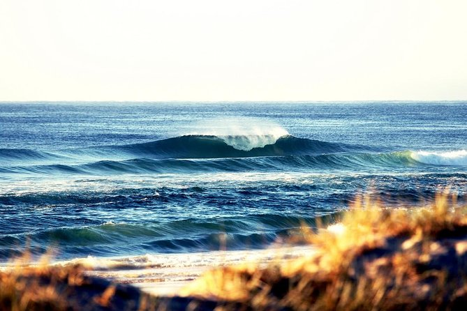 7-Day Byron Bay Evans Head and Moonee Beach Surf Safari from Brisbane Gold Coast or Byron Bay - Byron Bay Accommodations