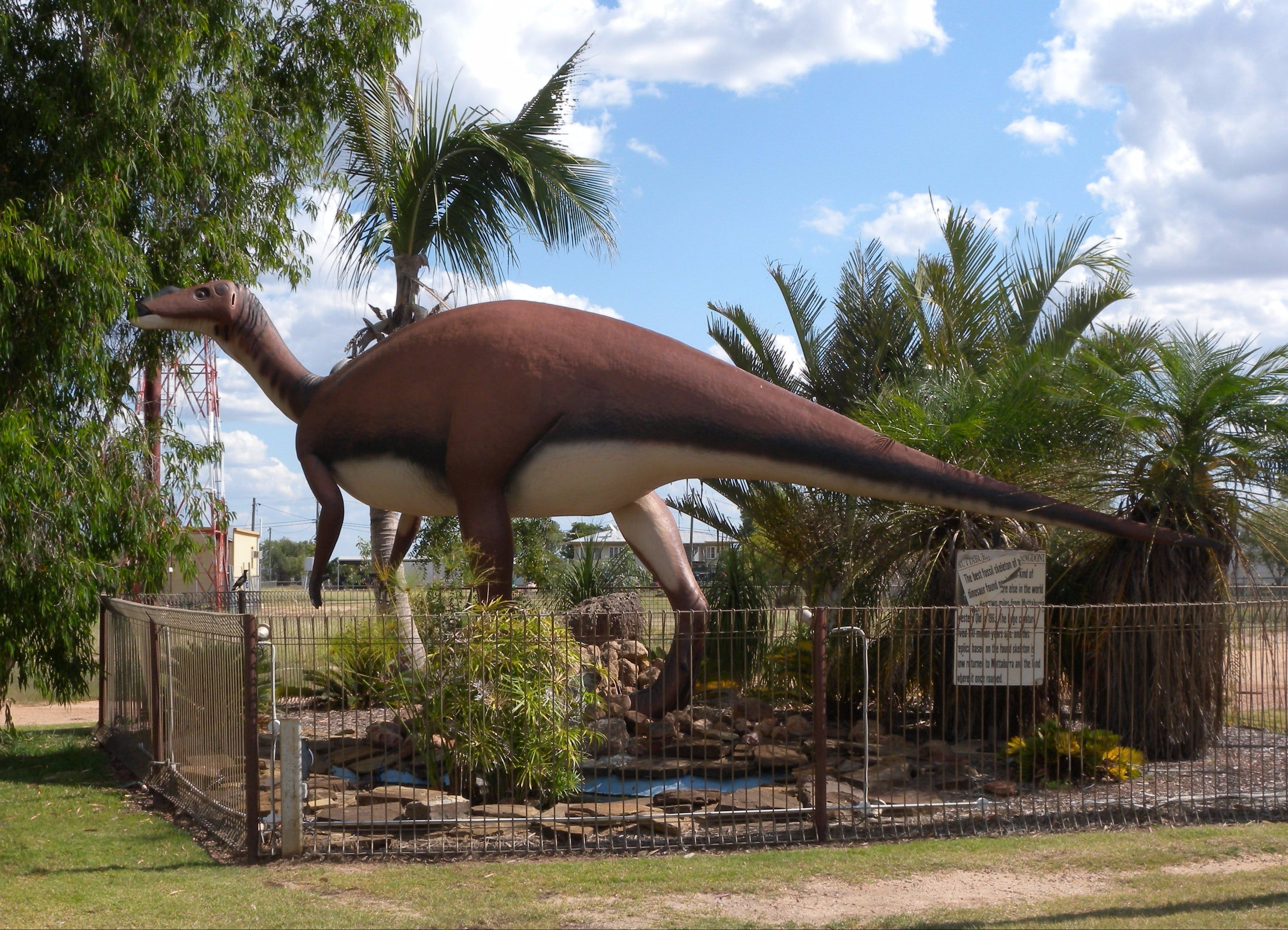 Muttaburrasaurus Langdoni Replica - Byron Bay Accommodations