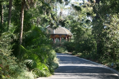Royal Botanic Gardens Victoria - Byron Bay Accommodations