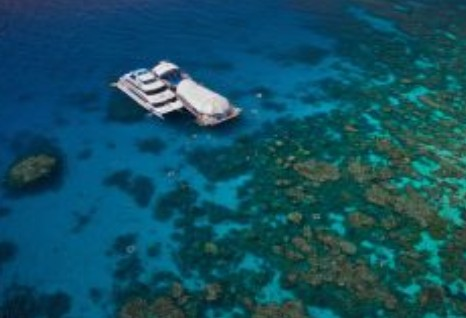 Great Adventures Reef and Green Island Cruises - Byron Bay Accommodations