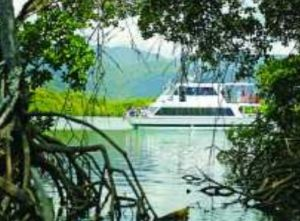 Cairns Harbour Cruises - Byron Bay Accommodation