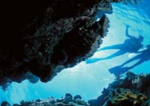 Deep Sea Divers Den - Byron Bay Accommodation