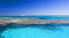 Reef Jet Cruises - Byron Bay Accommodations