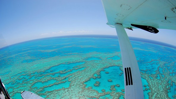 Air Whitsunday Day Tours - Byron Bay Accommodations