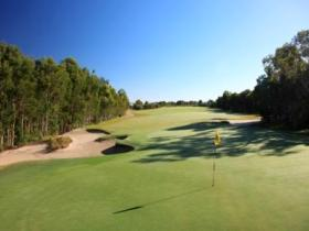 Pelican Waters Golf Club - Byron Bay Accommodations