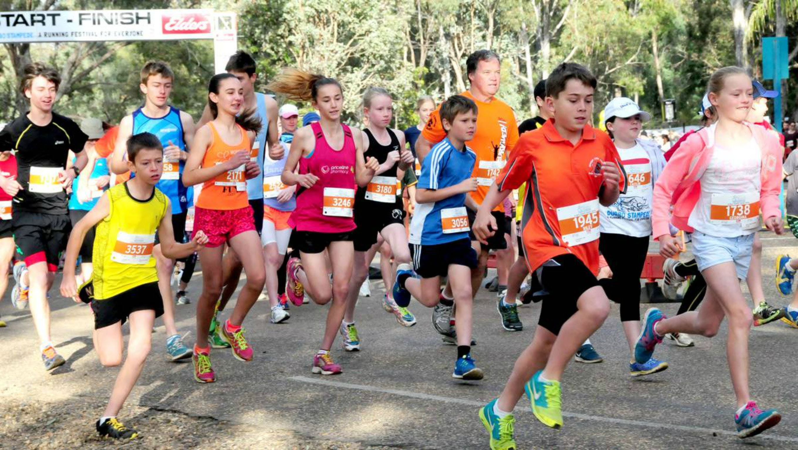 MAAS Group Dubbo Stampede Running Festival - Byron Bay Accommodations