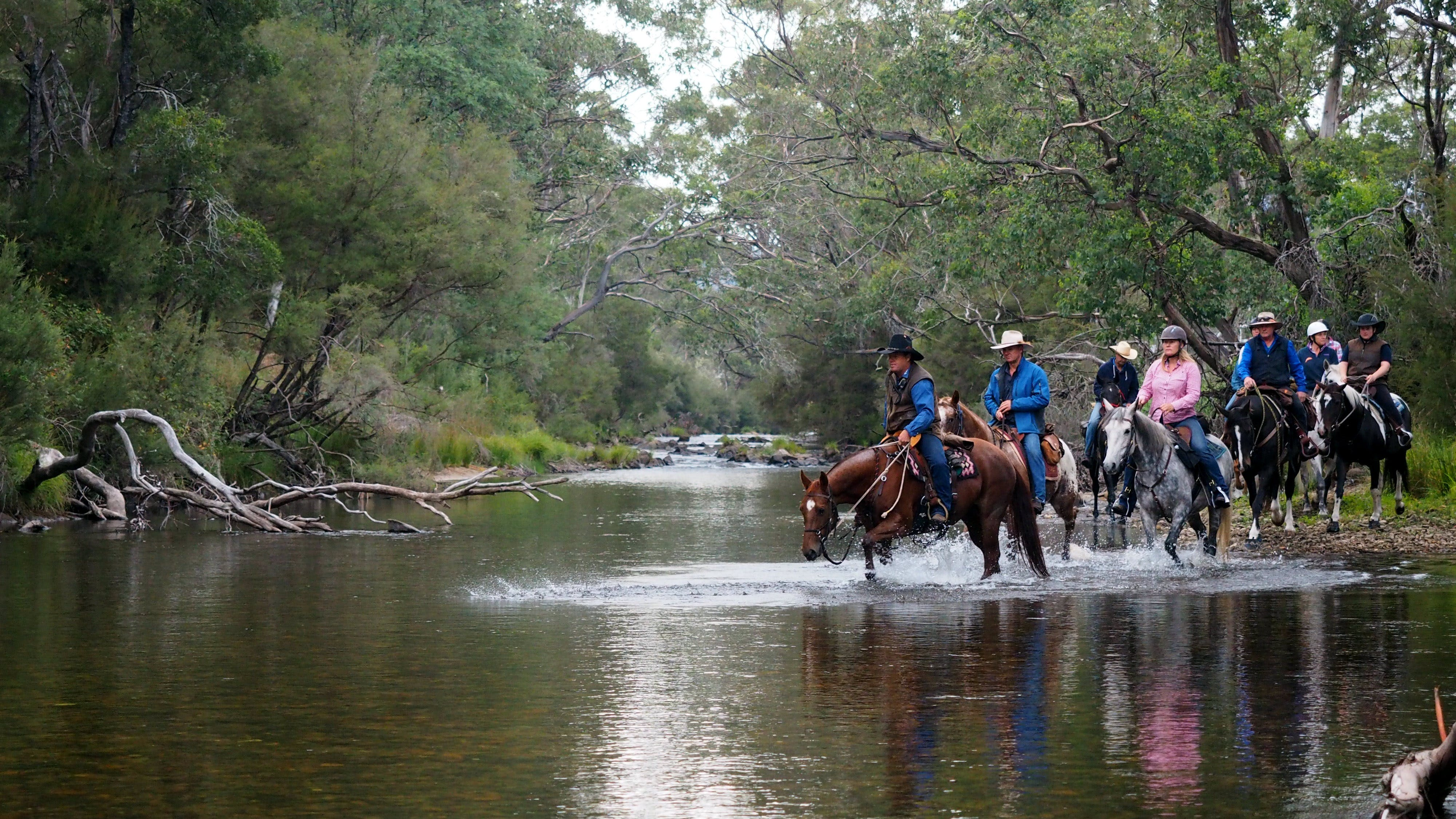 The Man From Snowy River Bush Festival - Byron Bay Accommodations